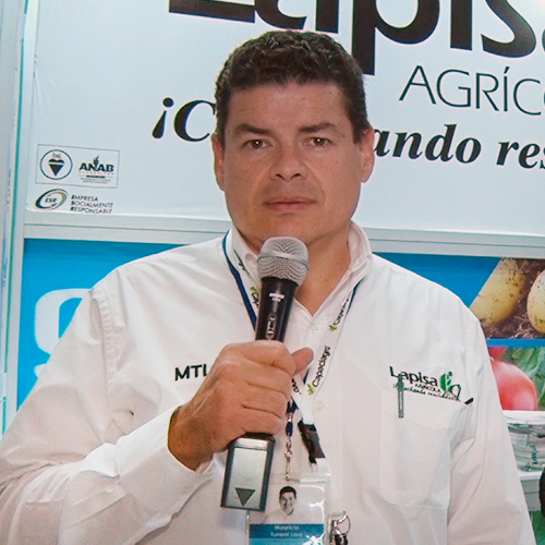 Lapisa (División Agrícola)